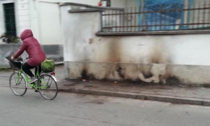 """A Pozzuolo Martesana i cestini della spazzatura """"prendono"""" fuoco"""