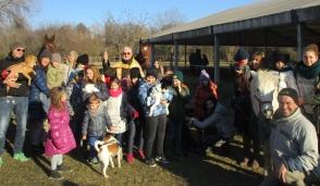 Animali benedetti a Trezzo per Sant'Antonio