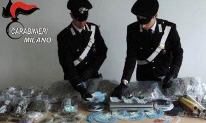 Droga a chili e soldi falsi, scoperto un laboratorio del crimine dai carabinieri di Cologno