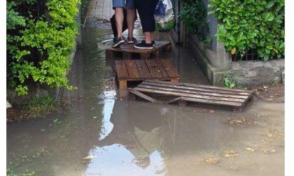 Quando piove finiscono in una laguna. La piccola Venezia è a Truccazzano