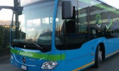 Tagli al trasporto pubblico locale, nuova interrogazione di Decorato