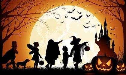Festa di Halloween, lo sponsor sono...le pompe funebri