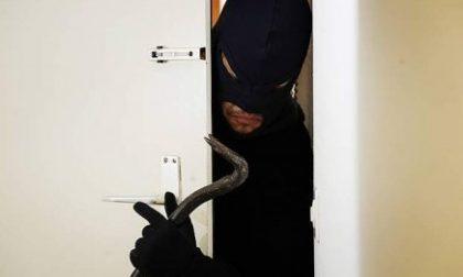 Furto sala slot di Cernusco: cassaforte sventrata e ladri in fuga