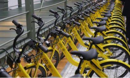 Bike sharing, Ofo si ritira, salta il progetto  in Città metropolitana