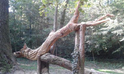 Il Covid non ferma i vandali: danneggiato ancora il drago Tarantasio