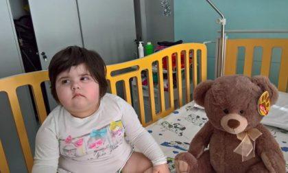 Arresto cardiaco a Natale addio alla piccola Matilde Ferri