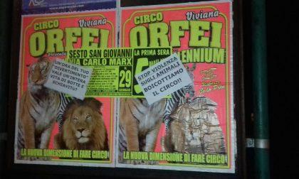Camion del circo senza assicurazione e libretto