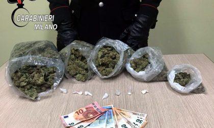 In possesso di un chilo di marijuana trentenne arrestato
