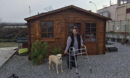 Camera ardente per il veterinario, anziana perde la casa e militanti di Leu aggrediti OGGI IN PILLOLE