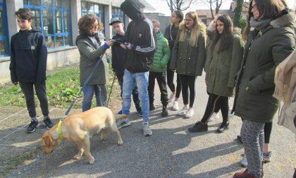 Trezzo studenti delle medie a lezione di pet therapy FOTO