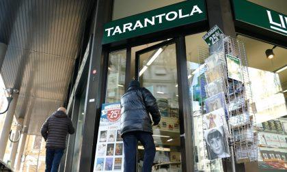Libreria Tarantola conquista prestigioso premio LA VIDEOINTERVISTA