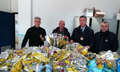 Polizia locale a caccia di venditori abusivi di mimose
