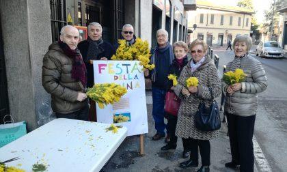 Mimose auguri alle donne a San Maurizio al Lambro