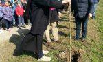 Mille alberi per far tornare le campagne di Pozzuolo all'antico splendore