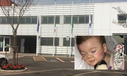 Bandiere a mezz'asta a Canonica per il piccolo Alfie Evans