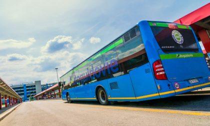 Autobus a rischio: venerdì 11 maggio c'è sciopero