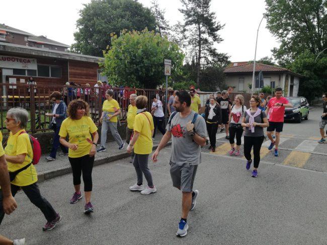 Cassina fragolosa walk+run