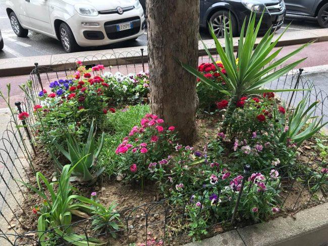 ladri di fiori 2