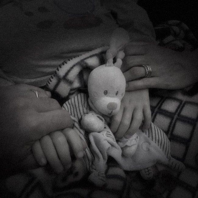 nicolò lanzoni figlio consigliere comunale morto per tumore