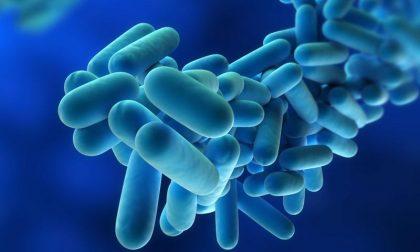 Legionella, salgono a 27 i contagiati