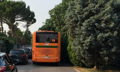 """Erba alta a Cernusco: """"Sul pullman sembra di essere nella jungla"""""""