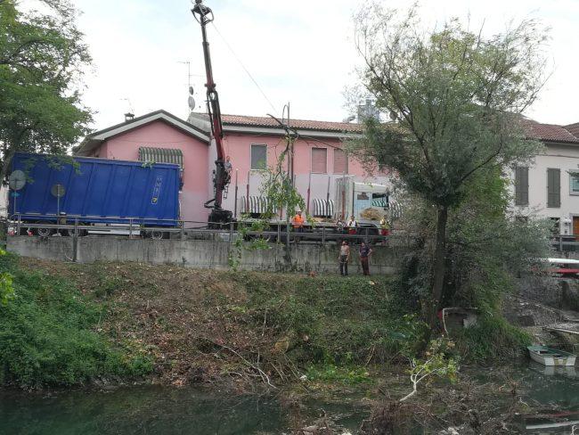 Canale Linificio, in corso la rimozione del pioppo gigante FOTO