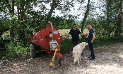 terremoto amatrice l'allevatore Luca guerrini con i volontari di charity in the world