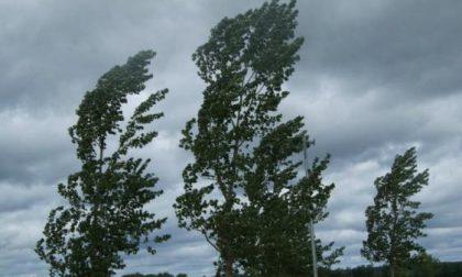 Raffiche di vento fino a 70 Km/h:  in Martesana è allerta arancione