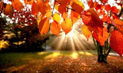Equinozio d'autunno oggi 21 settembre? No, è domenica 23