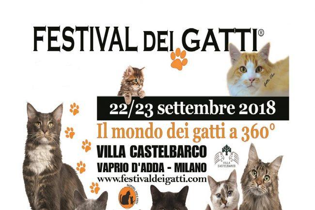 Festival dei gatti a Vaprio d&#8217&#x3B;Adda