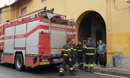 Nido di calabroni in una casa, arrivano i pompieri
