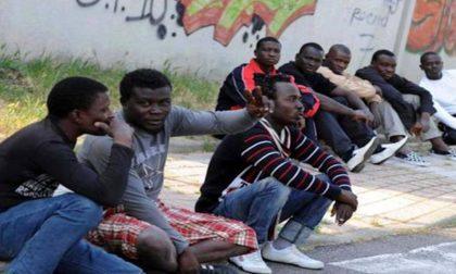 Profughi: anche la Croce Rossa deve pagare la tassa rifiuti