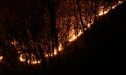 """Incendi, Pd attacca: """"Regione assente sulla prevenzione"""""""