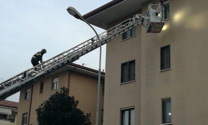 Vigili del fuoco in azione a Gorgonzola
