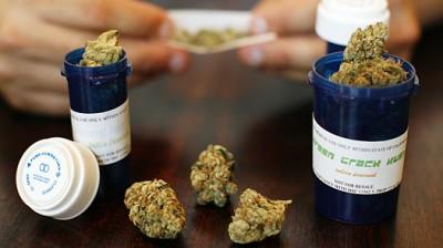Coltivazione cannabis terapeutica, sì del Pirellone