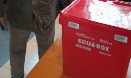 Al posto dell'Ecuosacco a Grezzago arriva l'Ecuo box