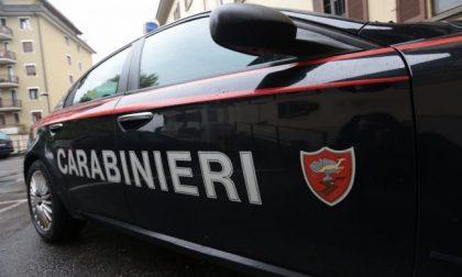 Ladra arrestata dai Carabinieri in un condominio di Cologno