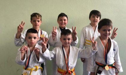 La Scuola Judo Trezzo ha chiuso il Campionato provinciale col botto