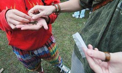 Violano l'ordinanza e si trovano al parco per la droga