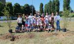 Intitolato il parco della Cassanese ai Bambini e bambine di Chernobyl