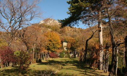 Pirellone modifica confini di alcuni parchi regionali