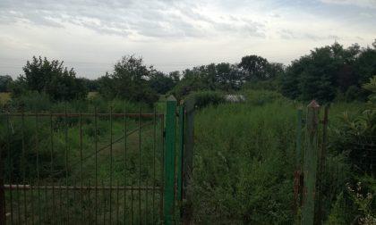 Uomo trovato morto nei campi, indagini in corso