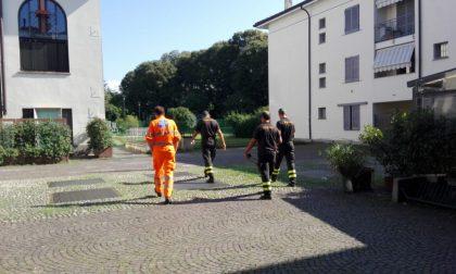 Odori molesti in corte: intervengono pompieri e 118