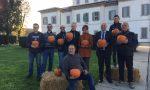 Halloween, invasione di zucche a Cernusco sul Naviglio