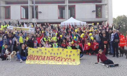 Violenza sulle donne, l'Adda Martesana marcia per dire no