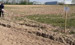 Compost inquinato, campi sotto sequestro preventivo a Basiano, Masate e Inzago