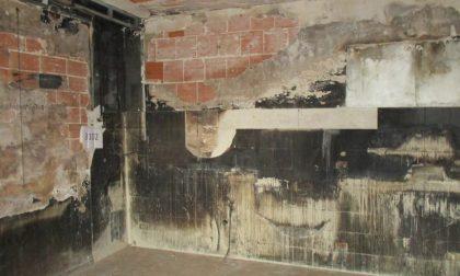 Case popolari, nove alloggi per i bisognosi a Peschiera