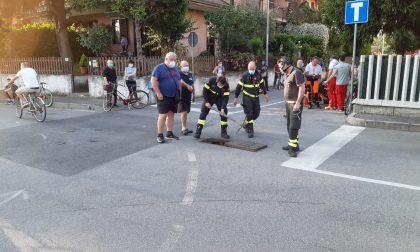 Cane disperso in una roggia, intervengono i pompieri FOTO