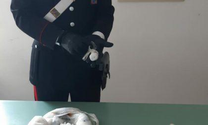 L'ex Sisas diventata covo di spacciatori, blitz dei Carabinieri