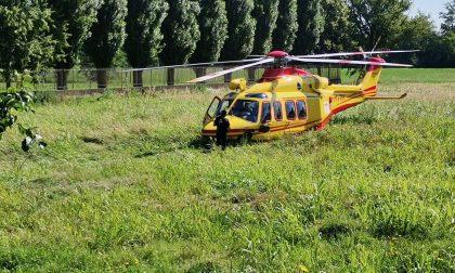 Punto da un insetto a Cernusco, arrivano ambulanza ed elicottero